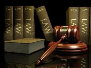 Điều 165 Bộ luật hình sự